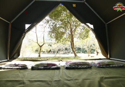 Madagui Forest City - Tent (2)